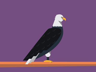 Eagle illustration eagle animals abc flat color simple pattern purple