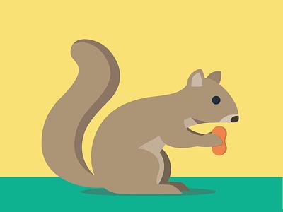 Squirrel illustration squirrel animals abc flat color simple
