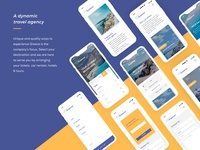 Mobile approach - various screens