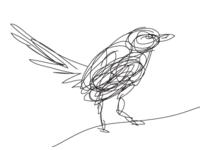 Birdline in Line Work