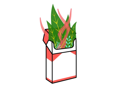 Marlboro plants flat plants marlboro vector design illustration