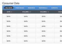 Customer data 2