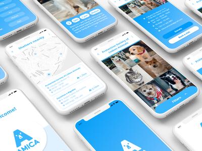 Amica App