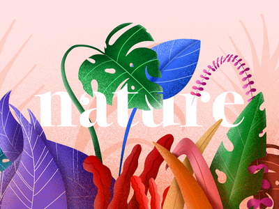 Nature flowers illustration illustration leaves colorful colors color procreate flowers