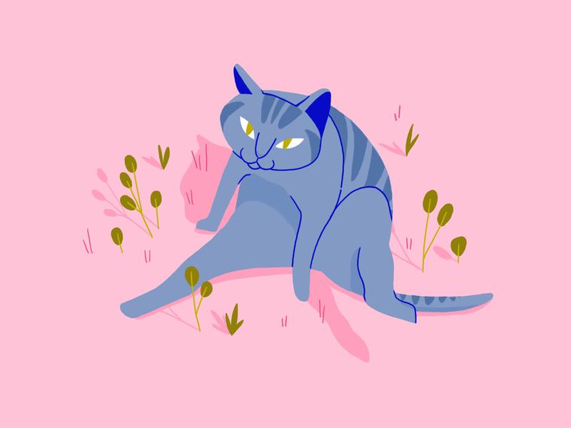 Cat design animal art olliebrius illustration character design character cat