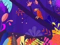 Colorful animal world-bird