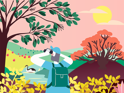 Colorful world survival sunset exploration environment birds among trees colour illustration