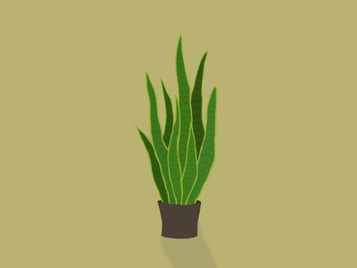 1st Digital Painting: Snake Plant