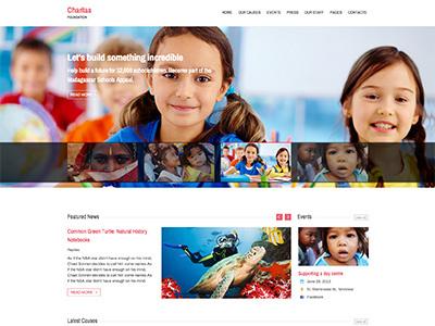 Charitas / Foundation WordPress Theme charitas events staff donation causes blog charity ngo foundation