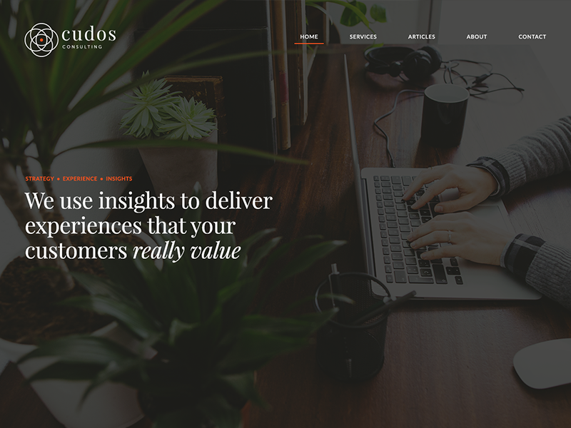 Cudos Consulting Website elegant dark cudos