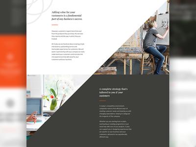 Cudos Consulting Home Page elegant dark cudos