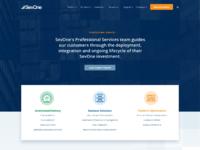 Sevone.professional services