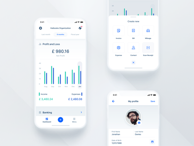Haibooks: Keep your business finances on track report profit expenses income control autmated real-time ai accountant financial organisation management dashboard business ios interaction app ux ui mobile