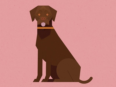 Chocolate Labrador design illustration geometric cute dog
