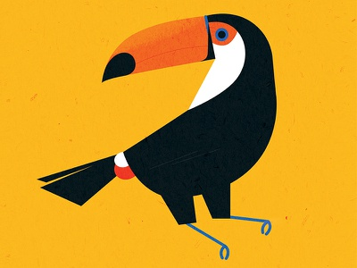 Toco Toucan flat toucan bird animal geometric simple texture vector