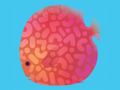 Checkerboard Discus animals tropical vector gradient whimsical fish