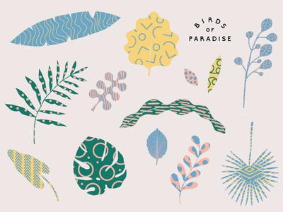 Birds of Paradise Gelato vector pattern leaf leaves
