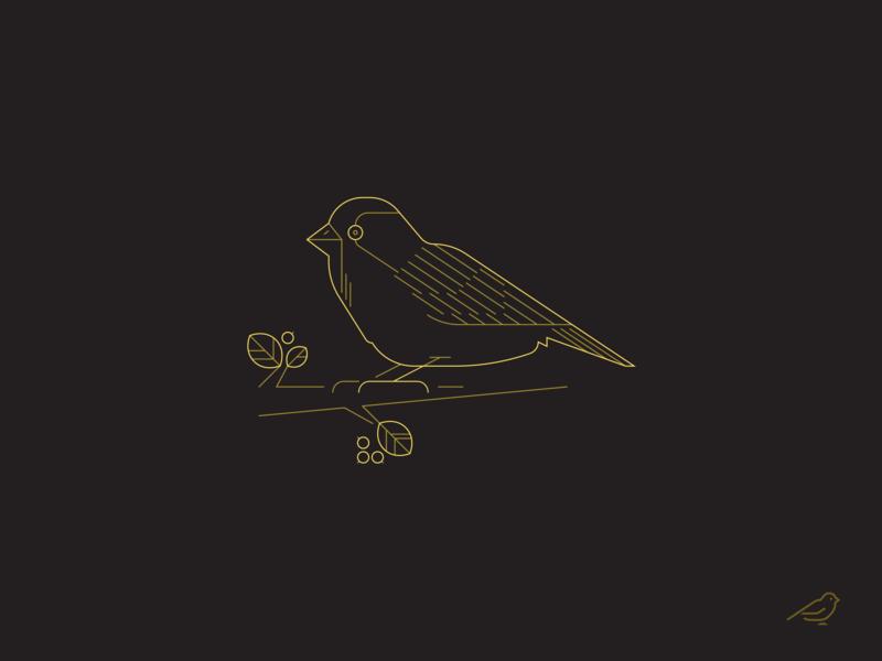 Sparrow vector character nature sparrow bird illustration illustrator