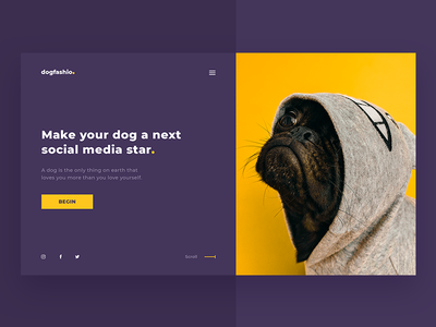 Dog Fashion decom ui star media social purple yellow pet fashion dog