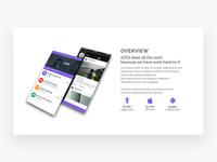Azex App overview