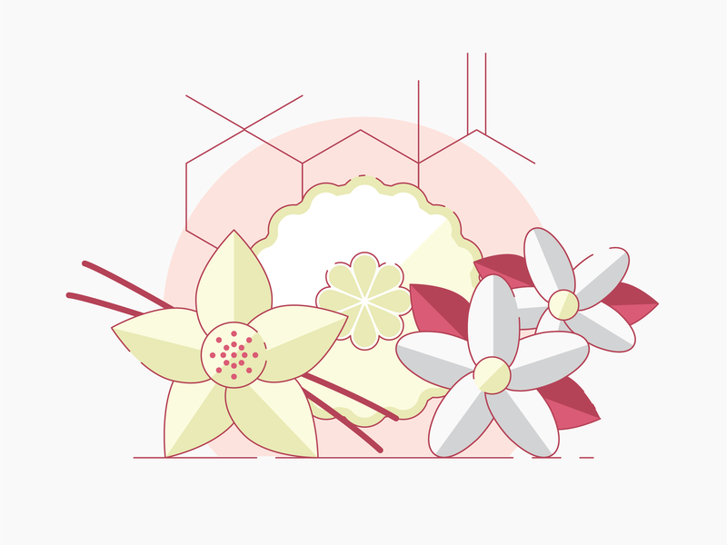 Perfume Ingredients by Clint Hess for Siege Media on Dribbble