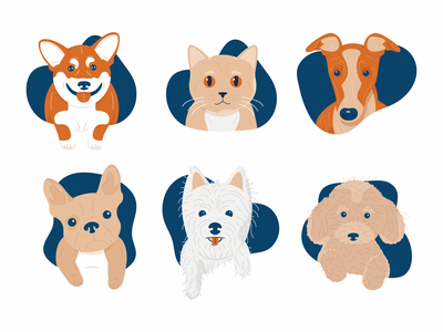 Pets greyhound westie poodle french bulldog frenchie corgi dogs dog pet pets cats cat