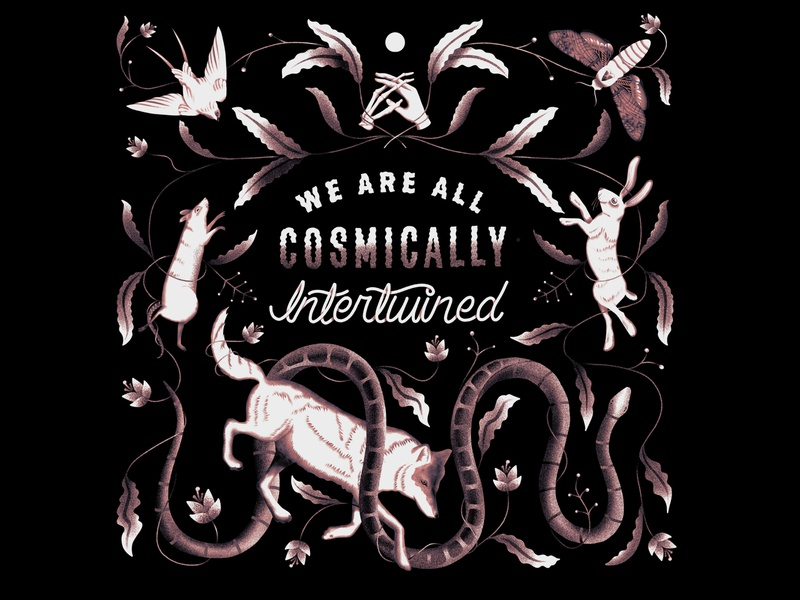 We Are All Cosmically Intertwined procreate texture illustration lettering moon bird snake rat wolf universe skeleton hands moth rabbit psychedelic cosmic animals