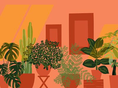 Houseplants money tree fern monstera jade home houseplant plant window design illustration