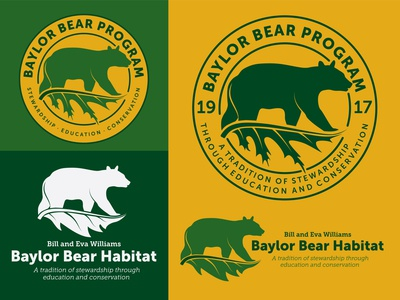 Baylor Bear Program