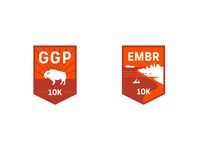 Strava Races: 10K Badges