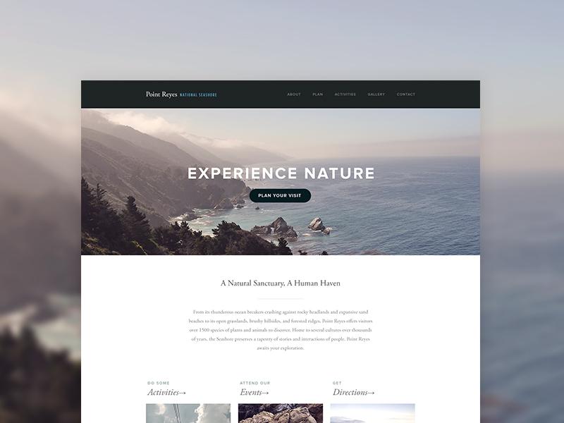 Bedford Concept ui web squarespace template theme photography minimal simple
