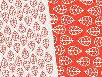 Milkweed Co. Pattern Exploration