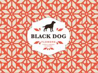 Black Dog Pattern Exploration