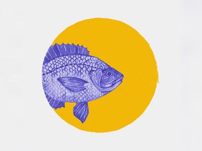 Also fish