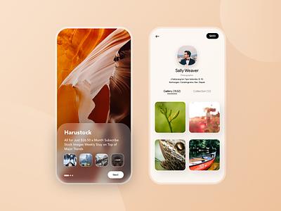 Photographer Stock Apps stocks concept app design social network photography gallery dollars