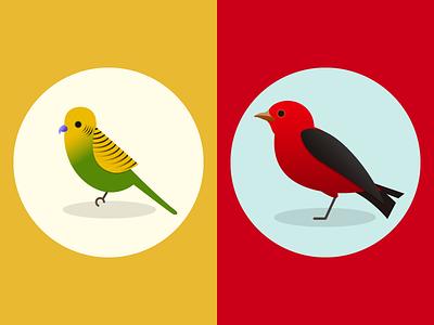 Parakeet + Tanager vector audubon animal scarlet tanager parrot parakeet bird