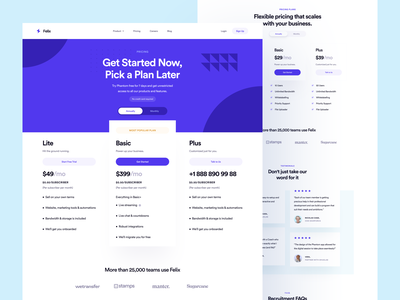 Pricing Page: Felix pricing plan saas app landing page design landing page ui saas landing ui pricing page pricing plans pricing table landing page pricing