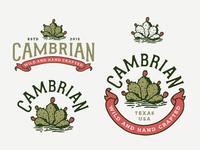 Cambrian Branding