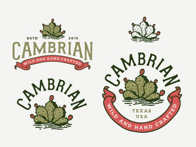Cambrian Branding southwest typography circle badge cactus logo illustration branding