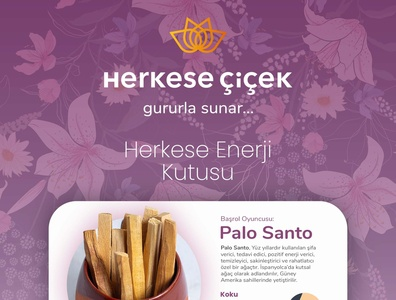 Infographic Design for Herkese Cicek Co.