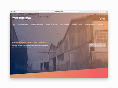 Deriplom Website