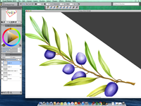 olive painting on COREL PAINTER 2015