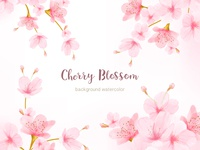 Watercolor Floral Cherry Blossom Frame Vector