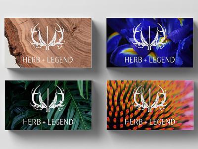 Herb+Legend Business Card Backs branding logo plant flower needle antlers medicine acupuncture