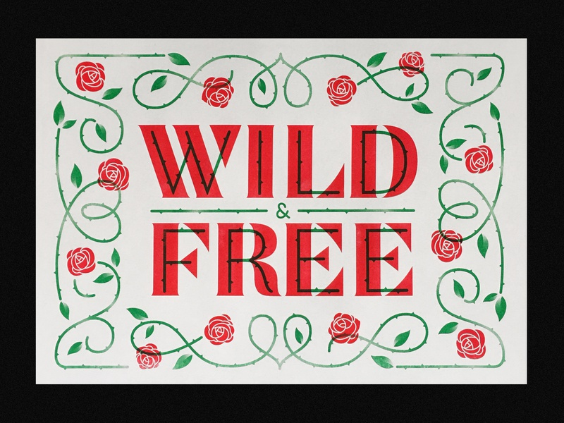 Wild & Free illustration type typography lettering