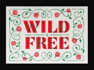 Wild & Free illustration type typography lettering
