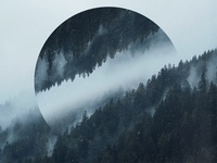 Mist over a dark forest - Geometric landscapes