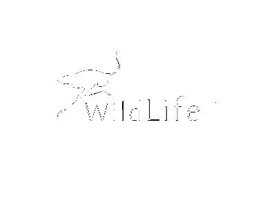 Logo Wildlife