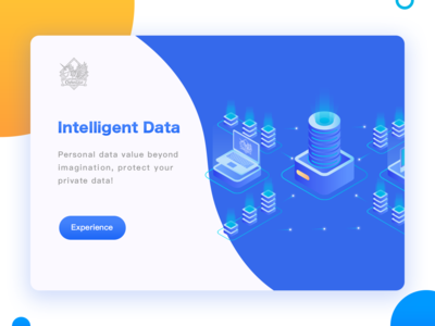Intelligent Data-Web interface exercise