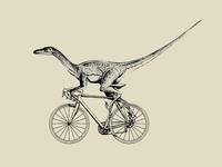 Velociraptor Valera